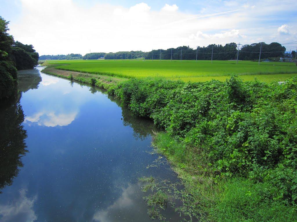 川 (壬生町国谷), Ашикага
