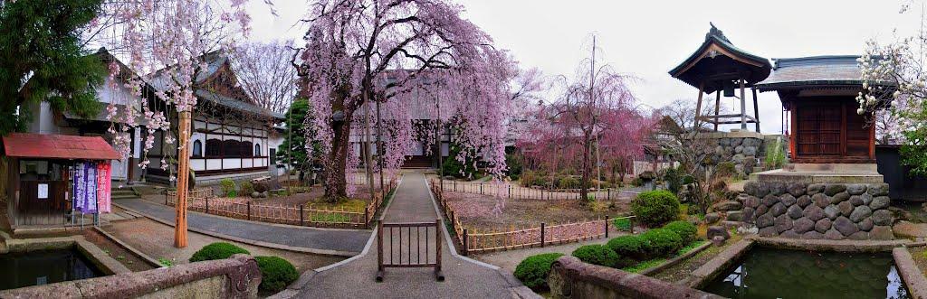 Kouzen-ji Temple, Yamagata 山形市 光禅寺, Тсуруока