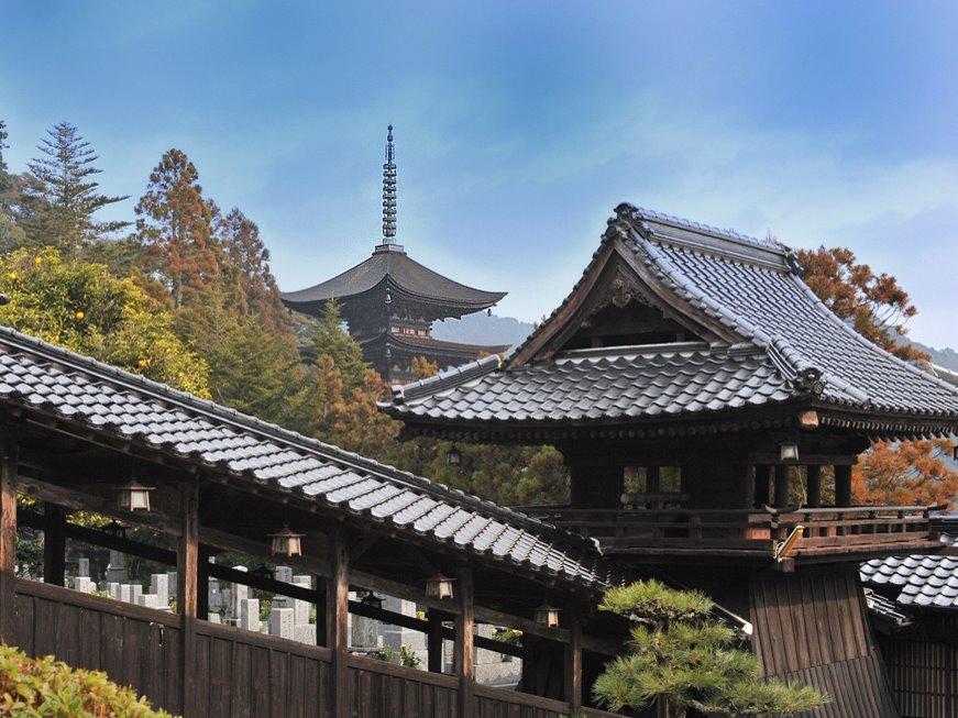 temple rurikou, Онода
