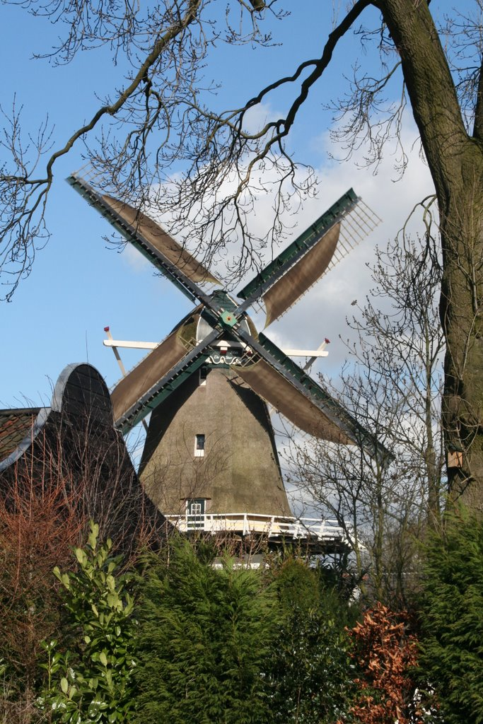 Windmill `De Ster` (`The Star`) with windblankets; Utrecht, Амерсфоорт