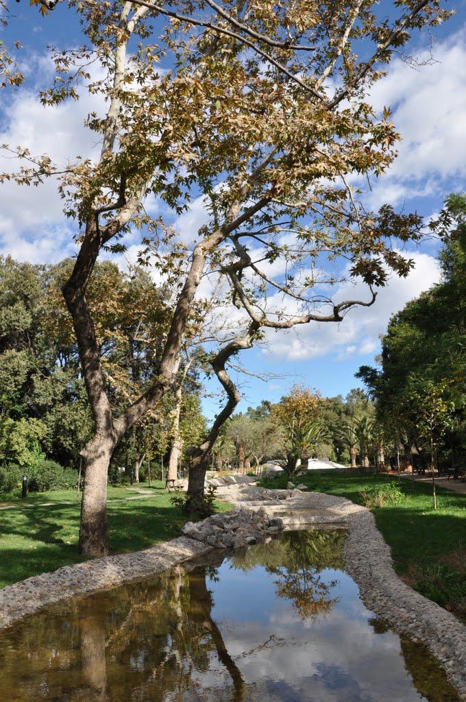 Reflections, Афины