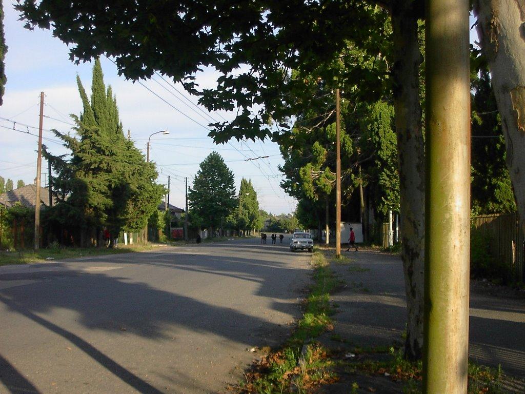 Бзыбское шоссе в сторону центра, Очамчиров