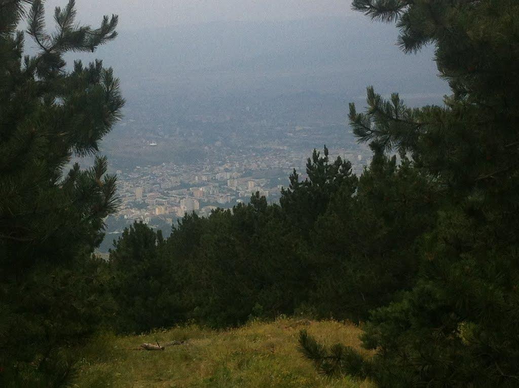უძოს მთა. ხედი თბილისზე, Коджори