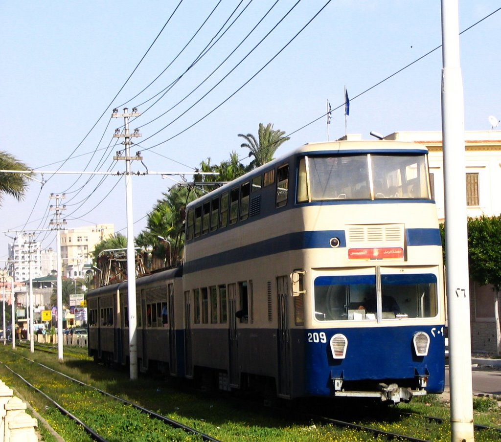Alexandria tram, Александрия