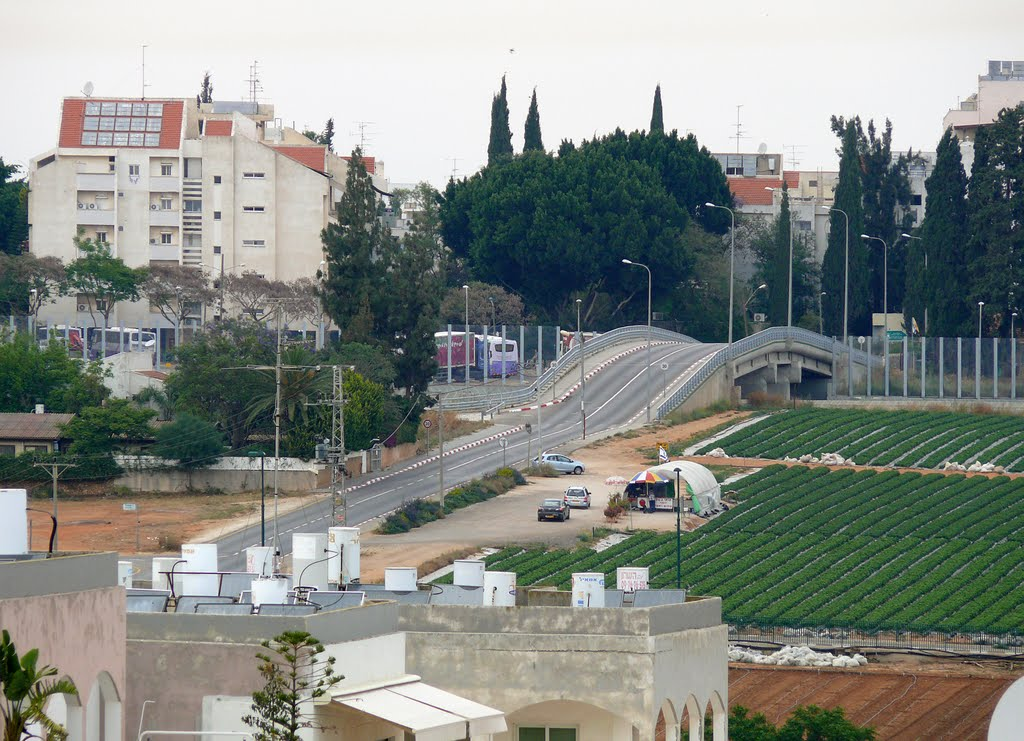Asirei Tsiyon, a bridge between Hod HaSharon and Kfar Saba, Кфар Саба