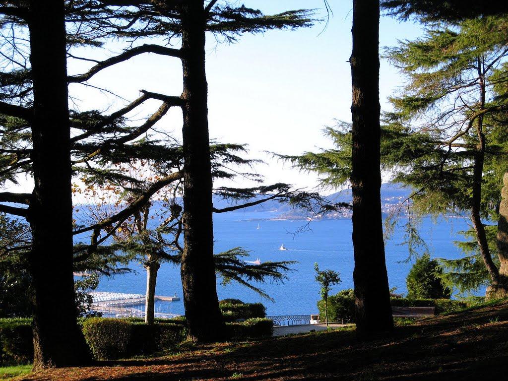 Ponta da Baleia, em Cangas, enxergada entre os cedros do Castro (Vigo, Galiza), Виго