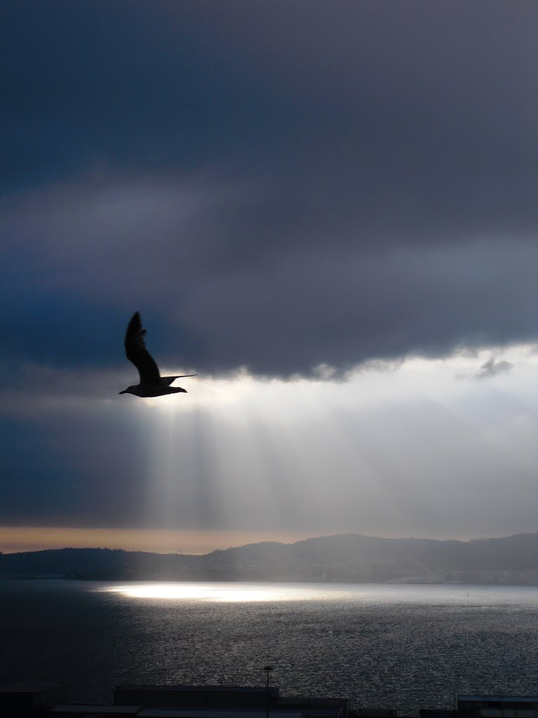 Volando al Cielo por la Ría de Vigo. España., Виго