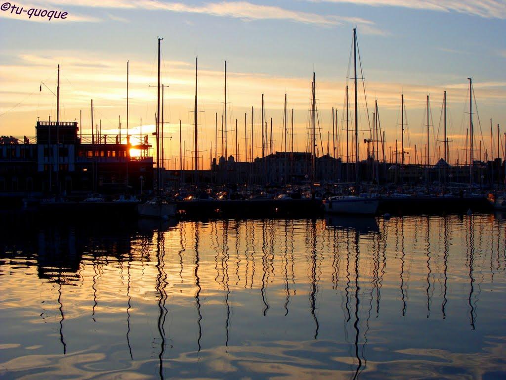 Harbour Lights (Trieste), Триест