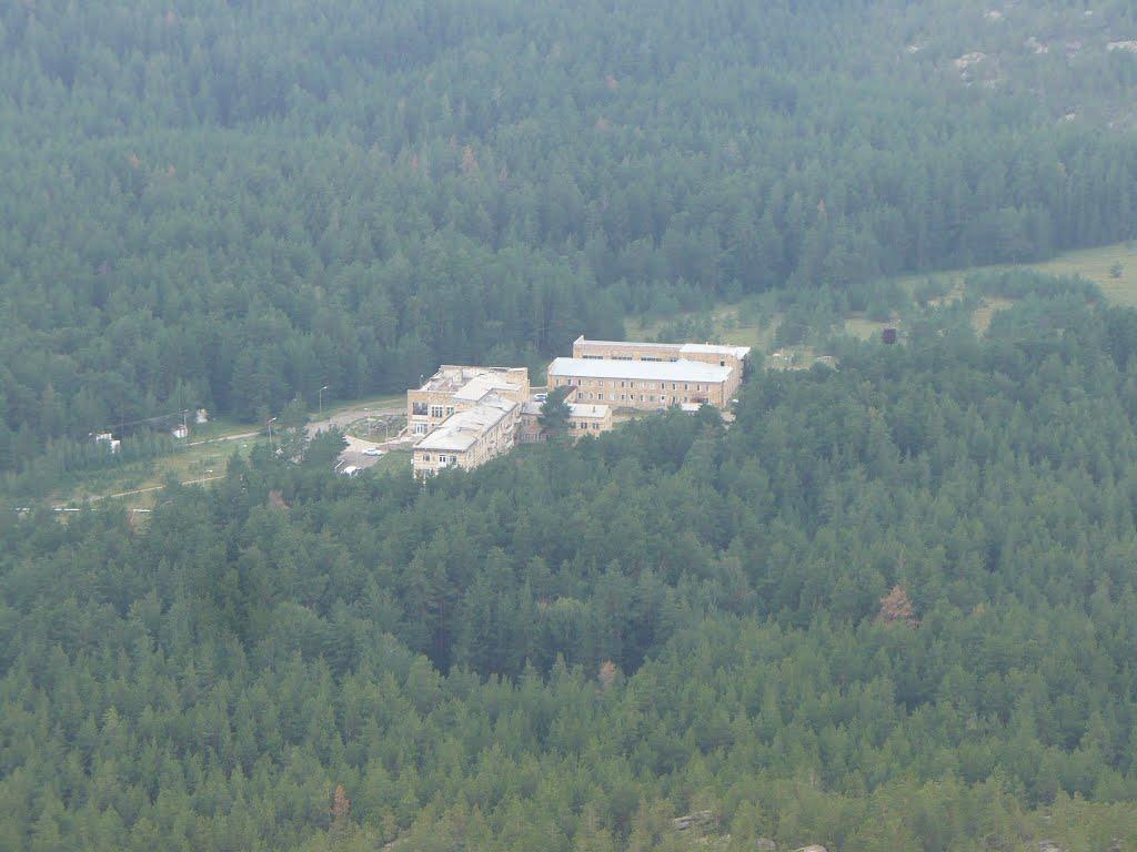 Сосновый бор, Каркаралинск