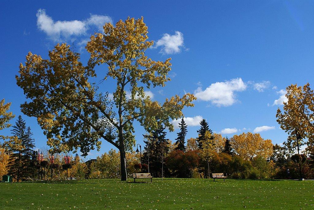 Princes Island Park, Calgary, Калгари