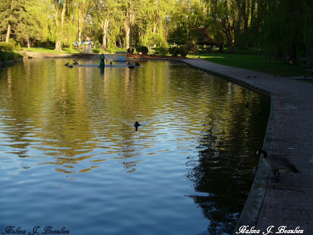 By the pond, Вернон