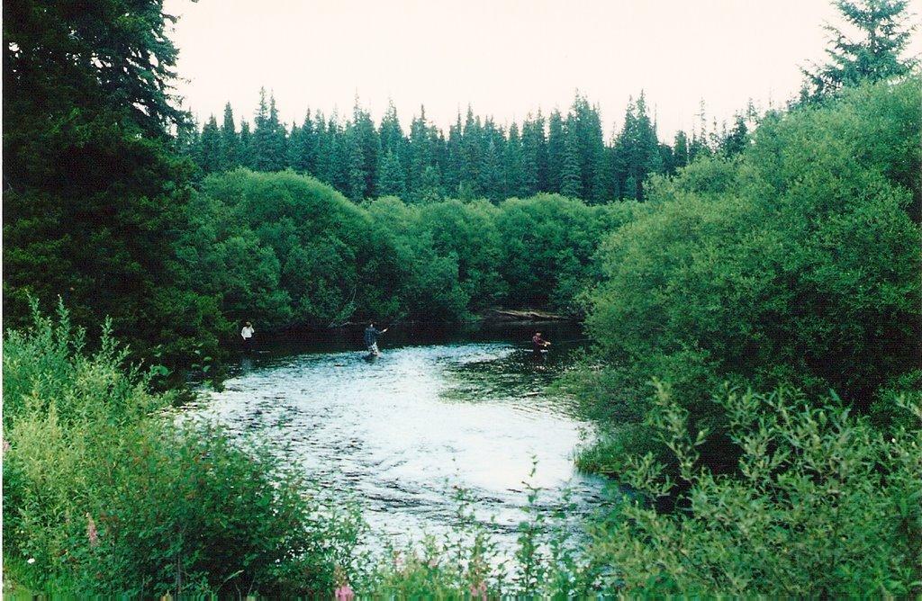 fly fishing Pinkut Creek, Миссион-Сити