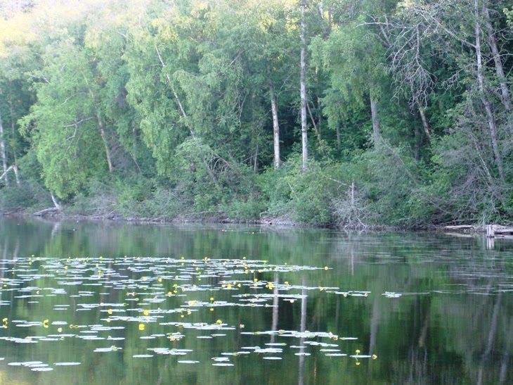 Francois Lake, Миссион-Сити
