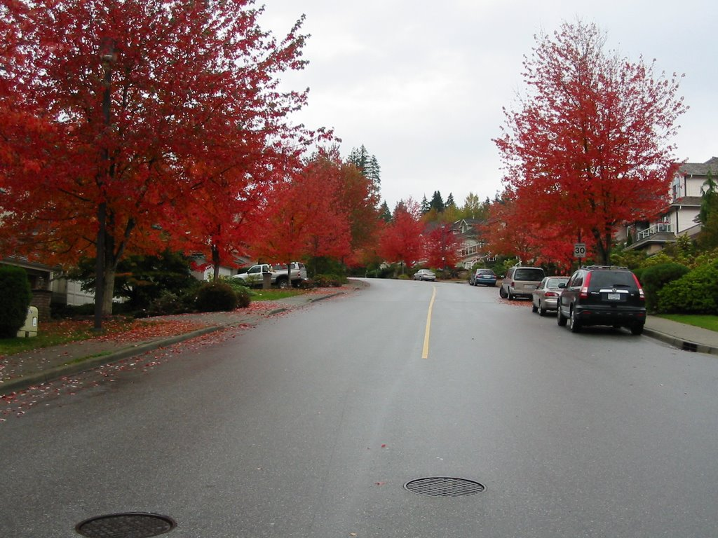 Fall in Parkside Dr., Порт-Муди