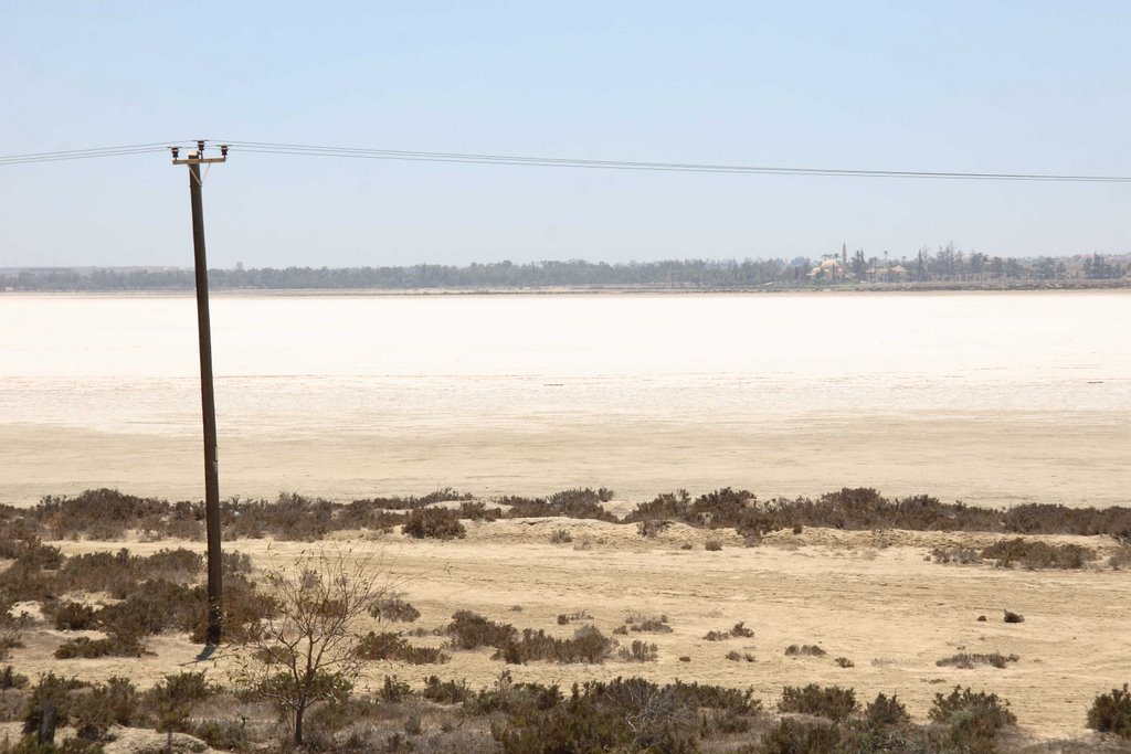 Hala Sultan Tekke looming in the horizon, Ларнака