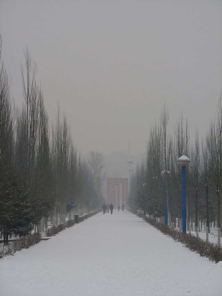 路(the Road in Arding Botanical Gardon), Баотоу