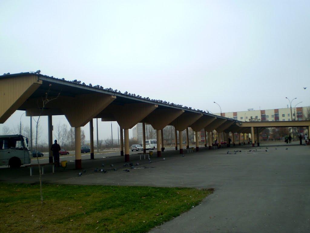 Платформы аўтавакзала, Кобрин