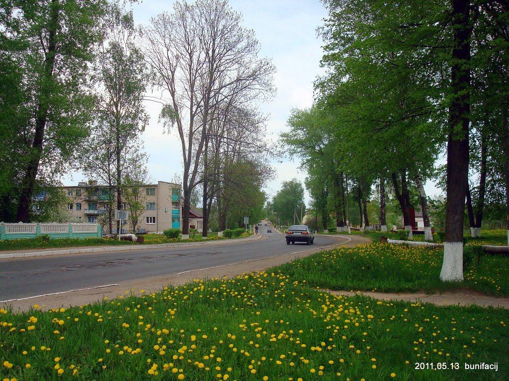 Дорога на Полоцк, Ветрино
