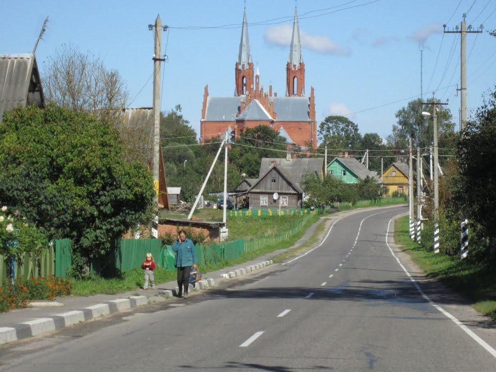 Вид с южной стороны на костел., Видзы