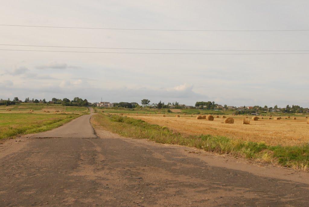 Деревня Нурово вид со стороны Западной Двины, Дисна