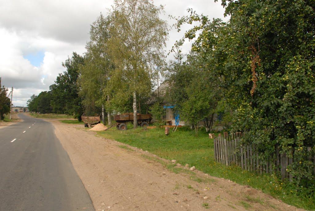 Деревня Нурово, Дисна