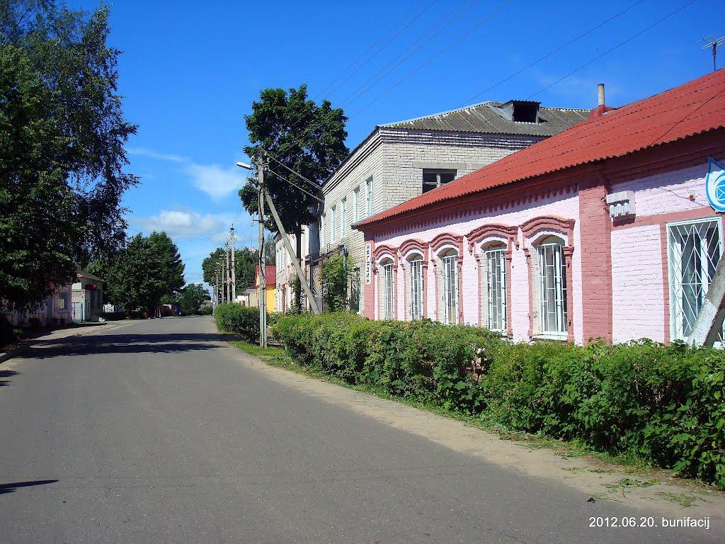 Улица в Дисне, Дисна