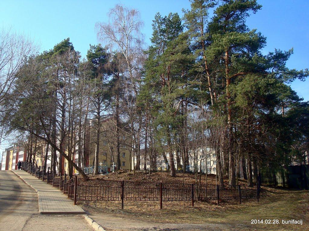 Старое кладбище деревни Середома, Новополоцк