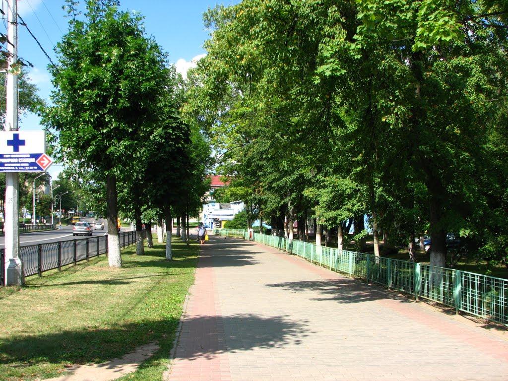 Новополоцк 2010 Космос, Новополоцк