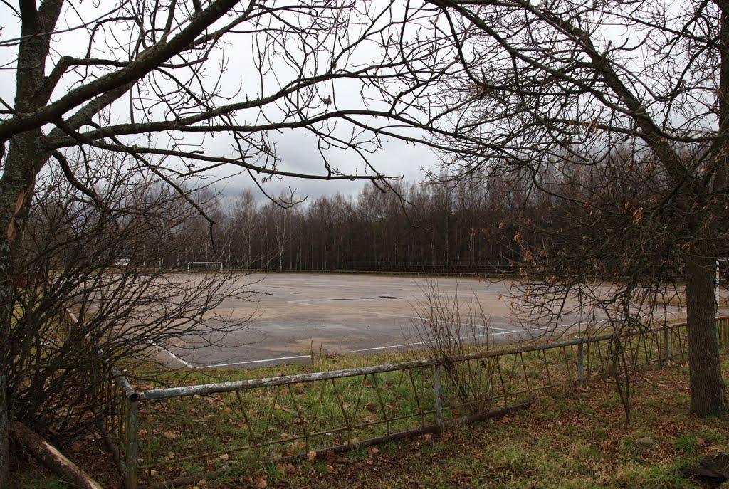 Стадион для игры в мотобол, Новополоцк