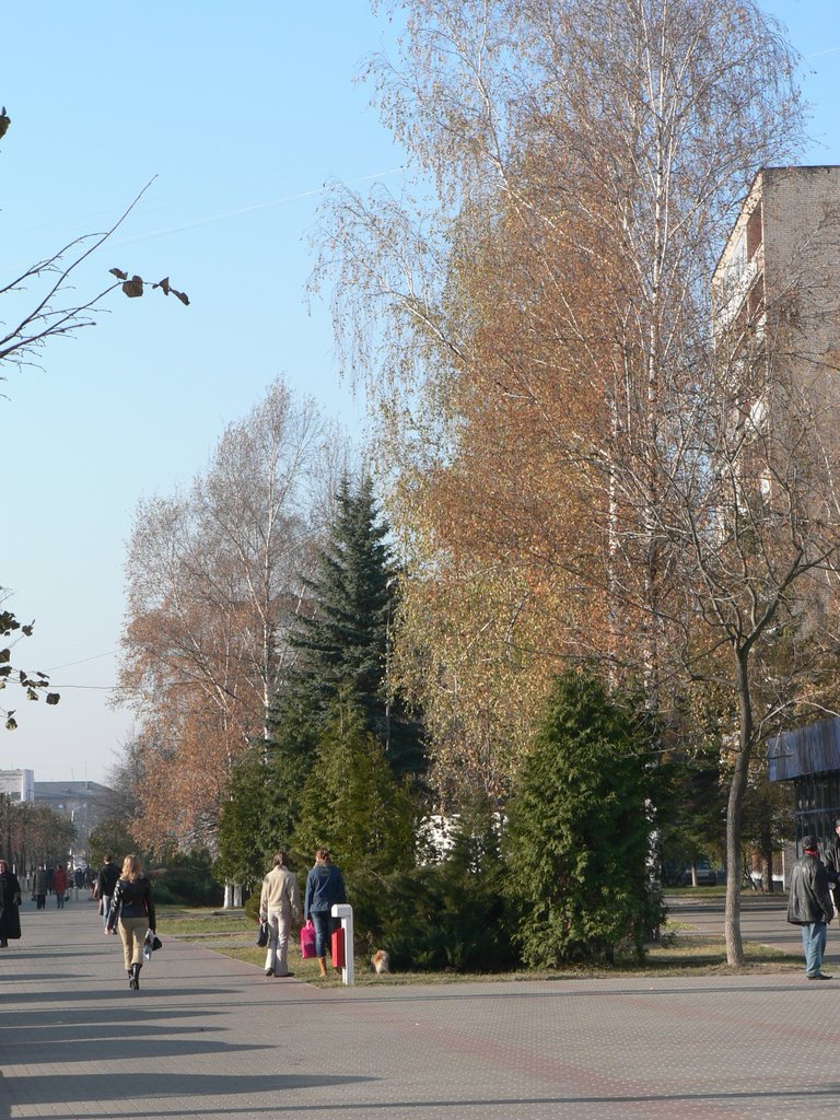 Molodejnaya str., Новополоцк