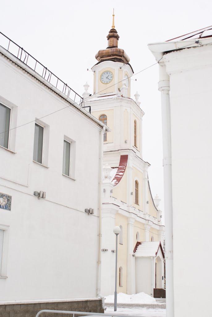 Калегіўм езуітаў, Орша