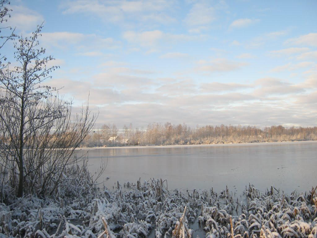 Чёрное озеро, Поставы