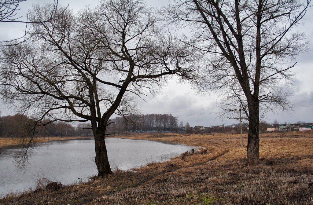 Река, Толочин