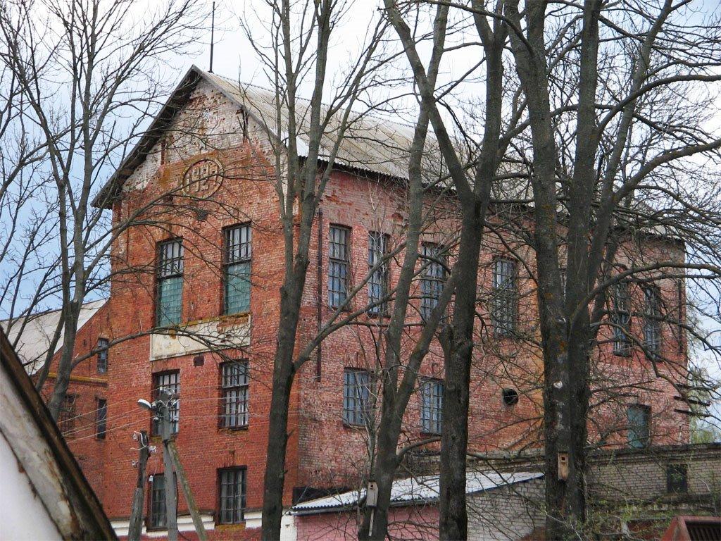 Крахмальный завод, Толочин