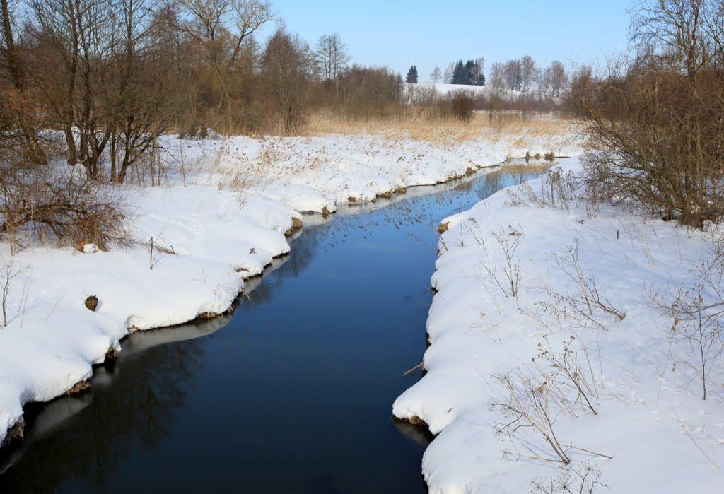 Река_Кривая120310, Толочин