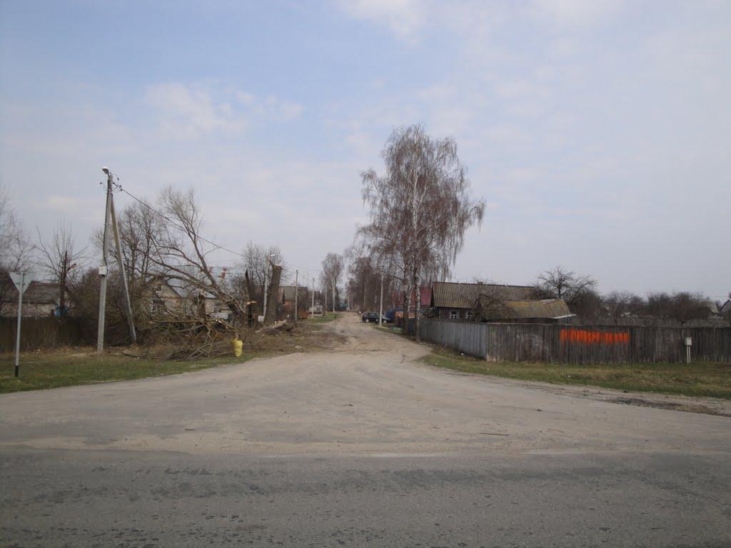 Большевик, ул., Большевик