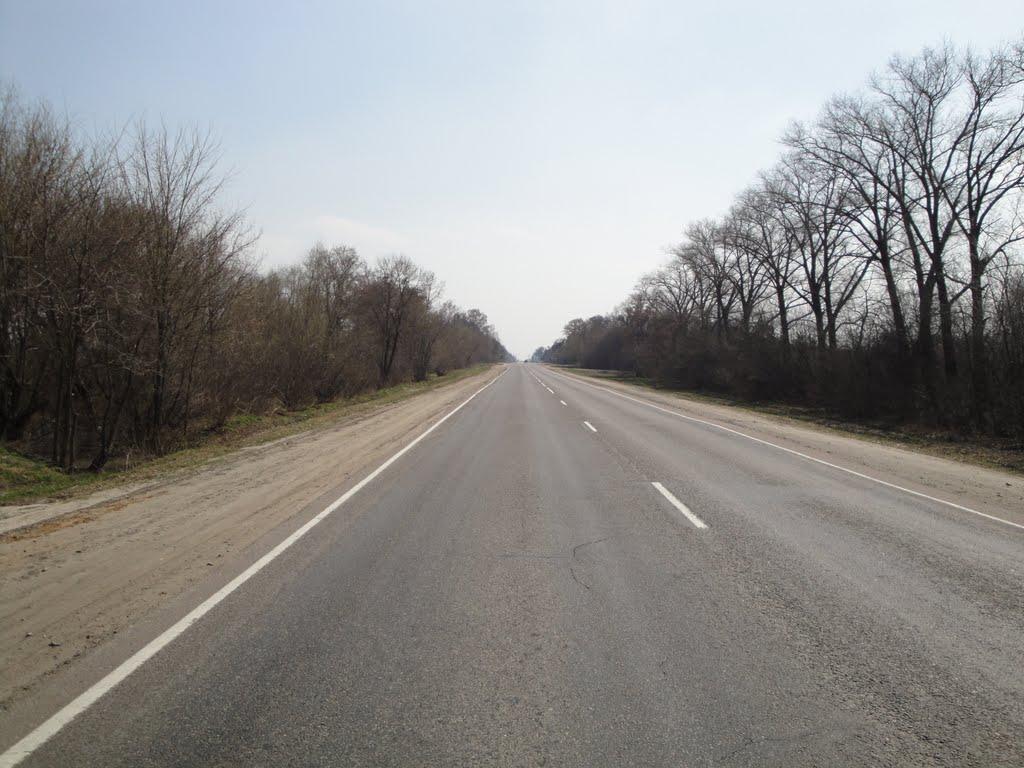 Дорога, Большевик