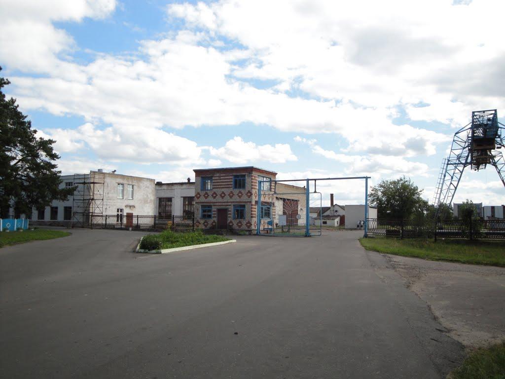 Большевик, Большевик
