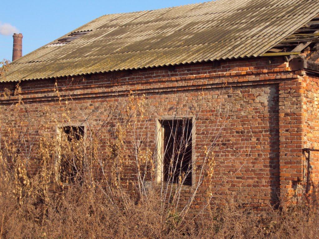 заброшенное строение, Большевик