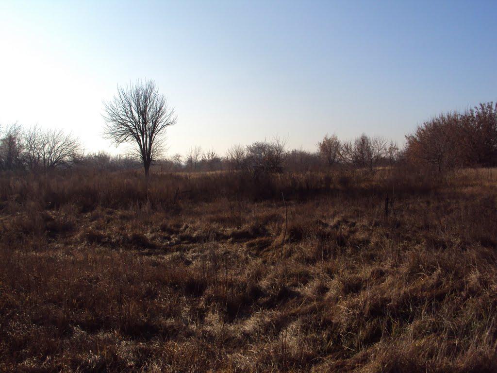 уничтоженная деревня, Большевик