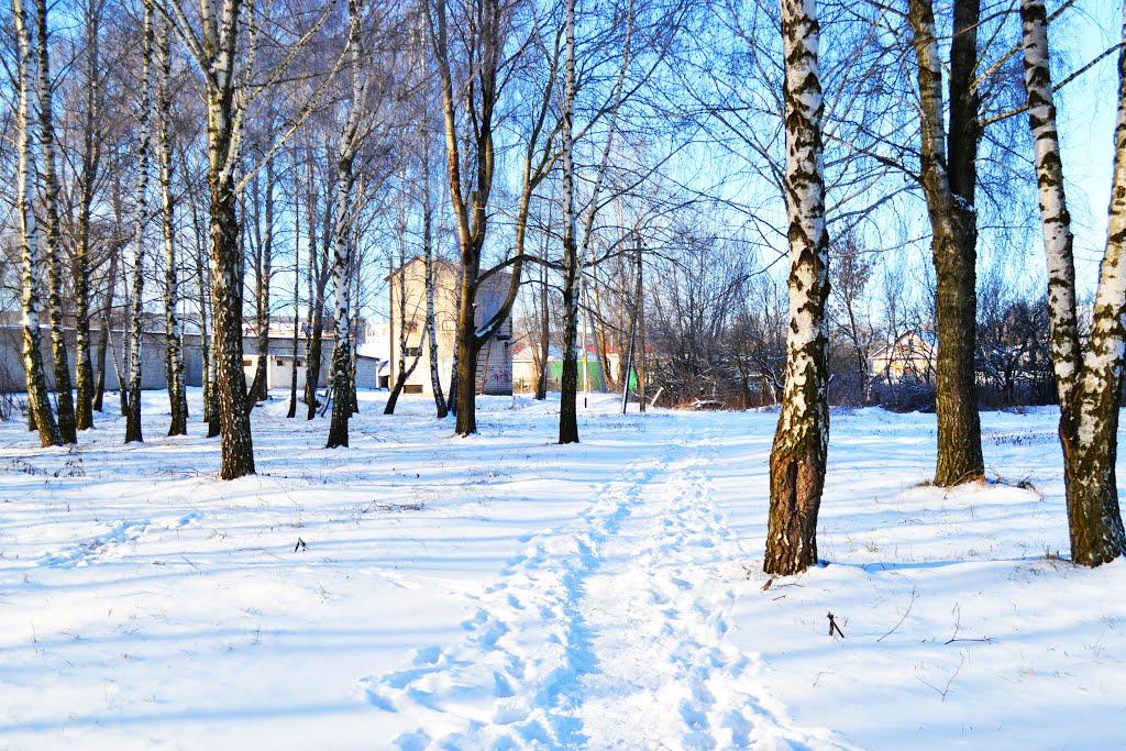 Тропинка через парк, Брагин
