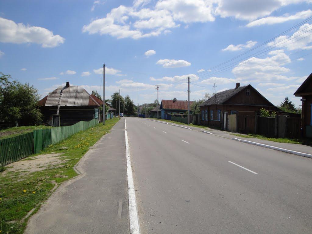 Брагин, ул. Кирова,18.05.2011, Брагин