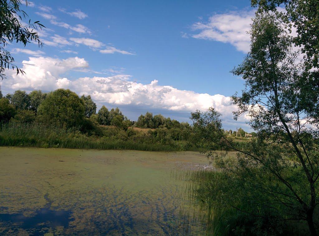 река Уть., Васильевка
