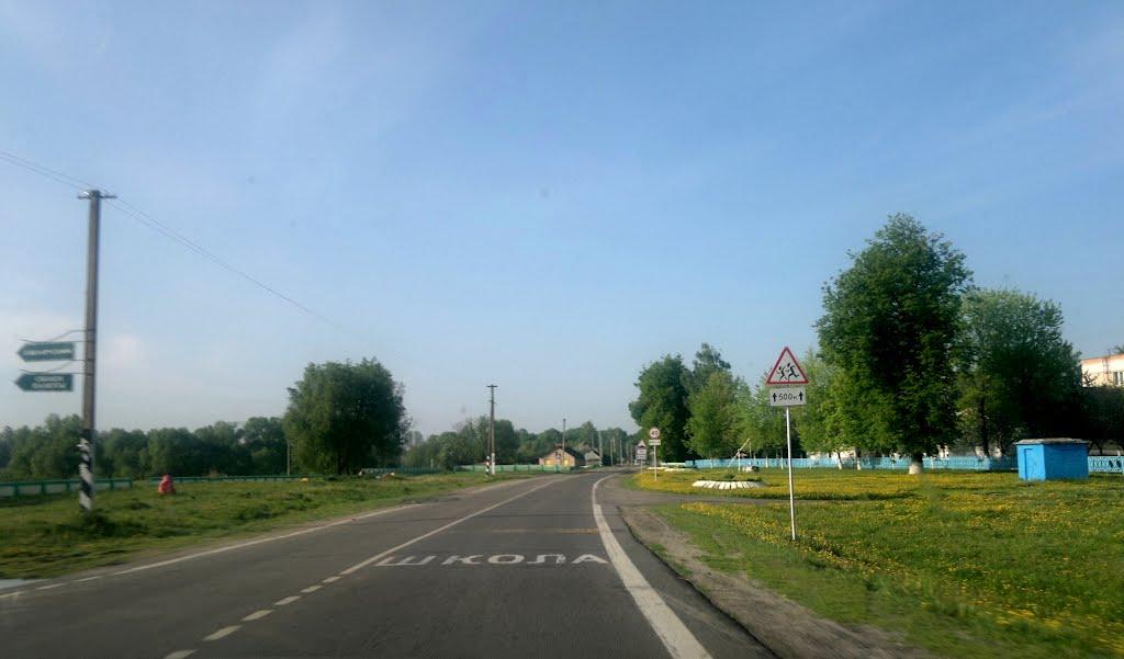 Школа, Васильевка