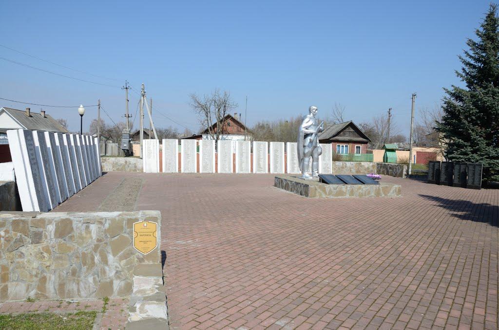 Памятник. Братская могила, 1943 г. A monument. Communal grave, 1943, Ветка