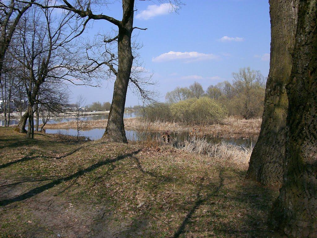 парк на выспе/park  on the island/(2), Добруш