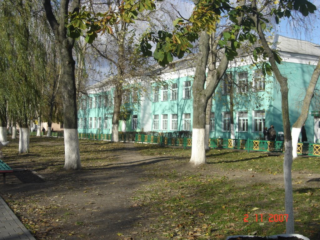 Colegio, Добруш