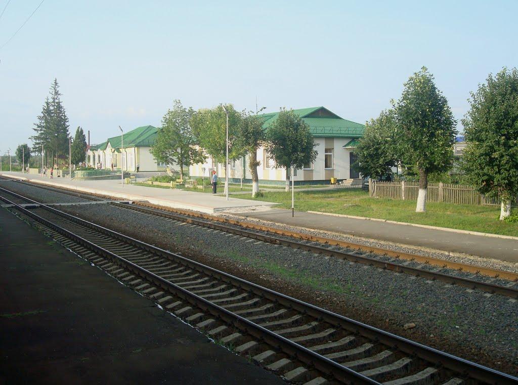 Станция Ельск, Ельск