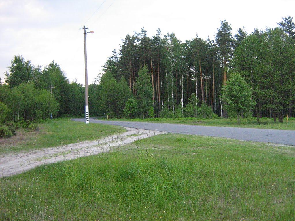 Дорога в центр Житкович из Соснового, Житковичи