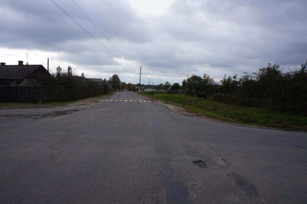 ул. Луговая, вид в сторону Стадионной ул., Житковичи